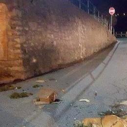 «Presepi devastati in Valle  Più forti dei vandali»