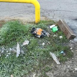 «Troppo sporco, il Comune non fa nulla  Così pago le lucciole per pulire la strada»