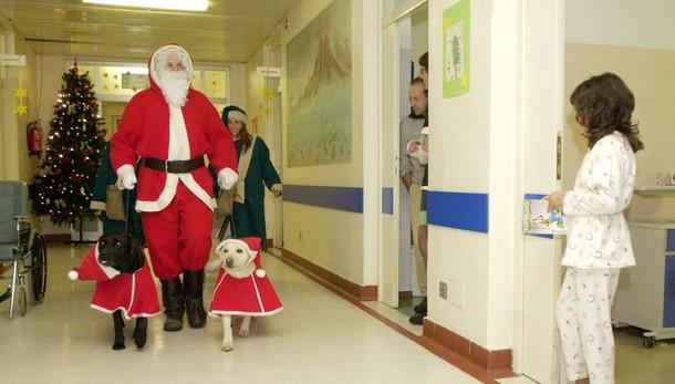 Autobus e ospedali, porte aperte ai cani  Il primario: «Bello, ma non si può fare»