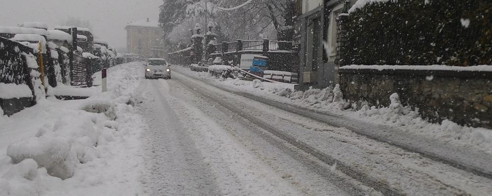 Piante in strada per pioggia e neve
