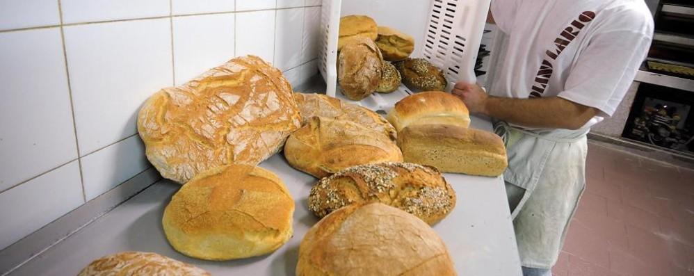 Mai così basso  il consumo di pane