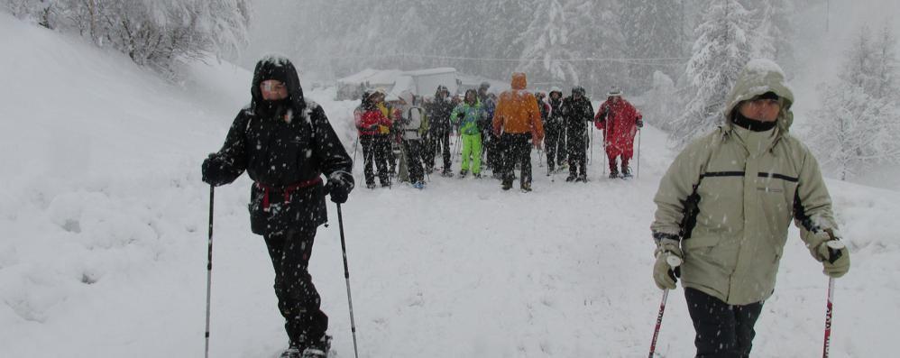 Neve nelle valli e pioggia   Carnevali rovinati