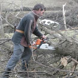 Boom di boscaioli a Canzo