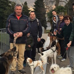 Anziana multata per i cagnolini  Villa Olmo, la rivolta del guinzaglio