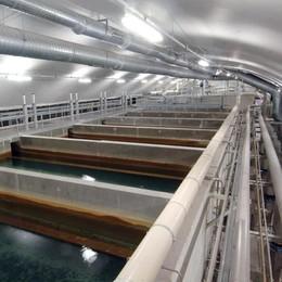 Acqua a Como, sempre più salata  In tre anni  rincaro del 29%