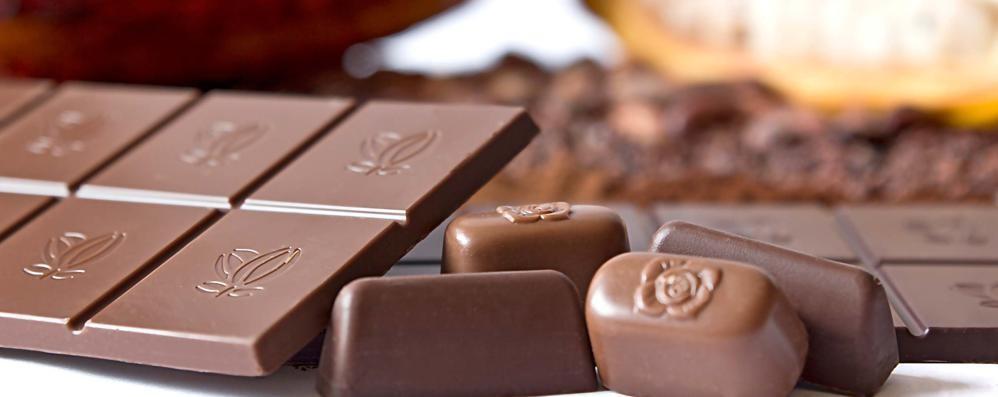 Expo al gusto di cioccolato Icam ha un posto in prima fila