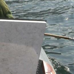 Il pesce (che non c'è) spaventa tutti  «Un guaio per i nostri ristoranti»