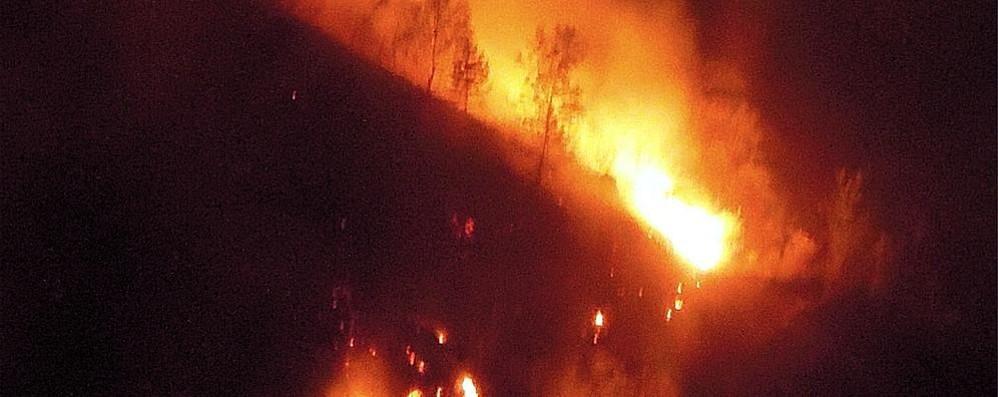 Maxi incendio di Lezzeno  Pulizia dei boschi sfuggita di mano