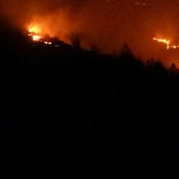 Trenta incendi in 4 mesi  Costi e danni enormi
