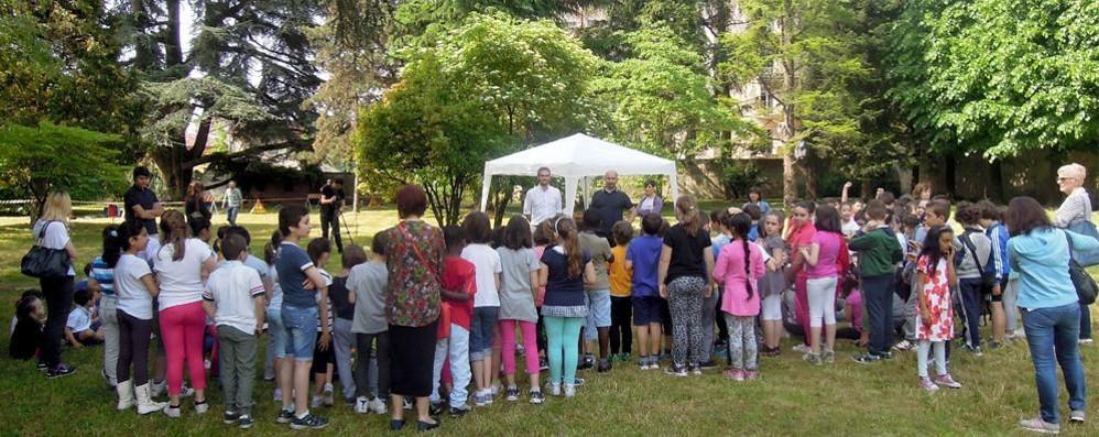 Villa Sormani rifiorisce  Con il cedro bicentenario