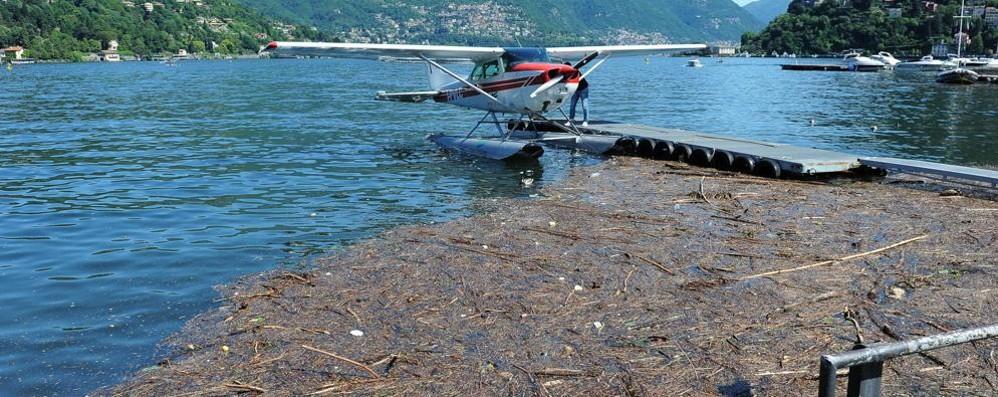 Rifiuti nel lago, che figuraccia  I turisti: «Che vergogna»