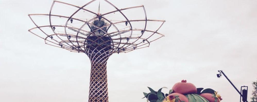 Viaggio nell'Expo  Il made in Como   conquista il mondo