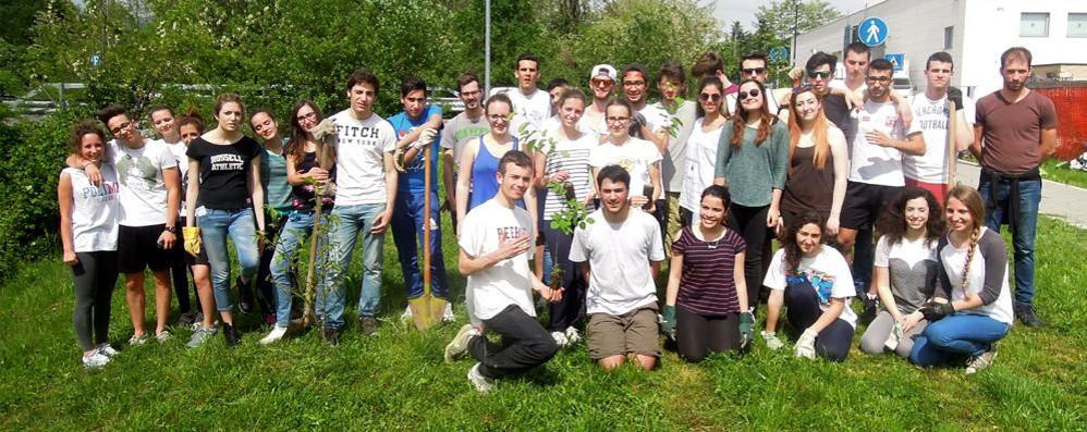 Gli studenti pensano al verde  Piantano nuovi alberi a Cantù