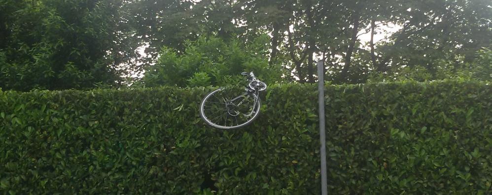 Paura in curva a Carimate  Investe ciclista e poi scappa