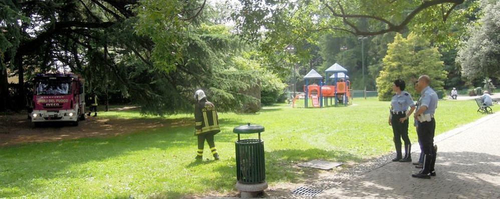 Erba, vandali al parco Majoni