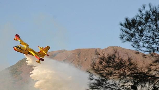 Corpo forestale attivo contro 43 incendi