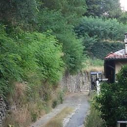 Tremezzina, la Vecchia Regina  Ultima frontiera del turismo