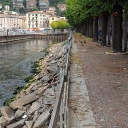 Salvini: «Paratie, fermate il progetto»