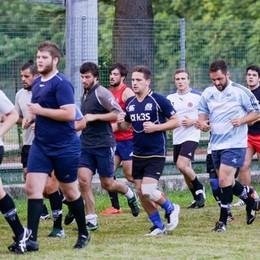 """I """"Cinghiali"""" al lavoro  Il Rugby Como è carico"""