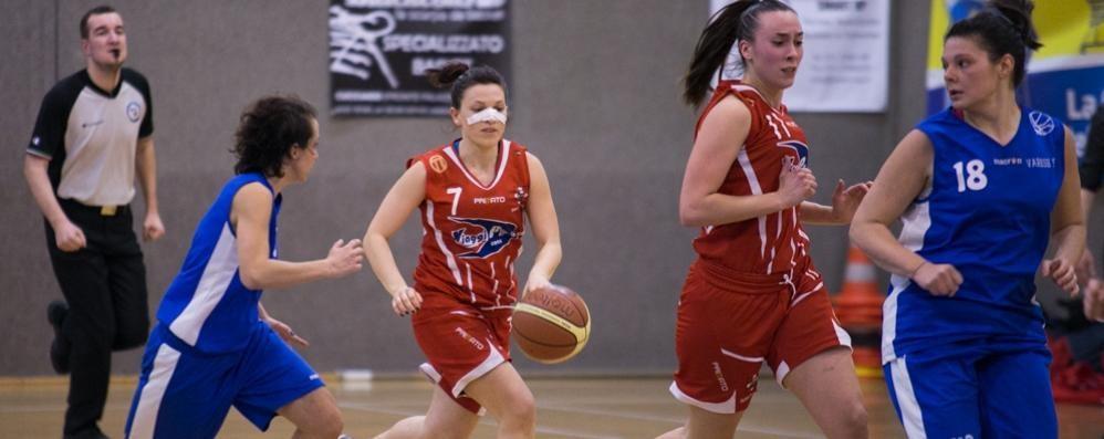 Ecco il Basket Como: con otto novità