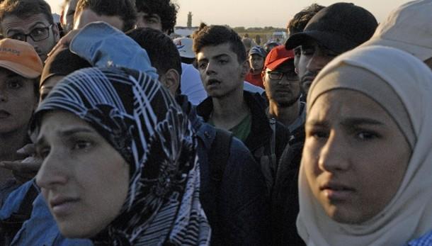 Deputata Pd offre ospitalità a migranti