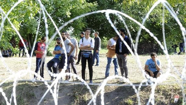 Migranti:calma a confine Ungheria-Serbia