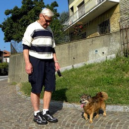 Super Chicco, il cagnolino  più anziano d'Italia