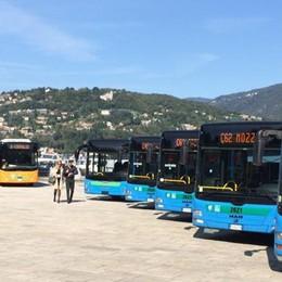 Como, nuova flotta di bus  Tutti accessibili dai disabili