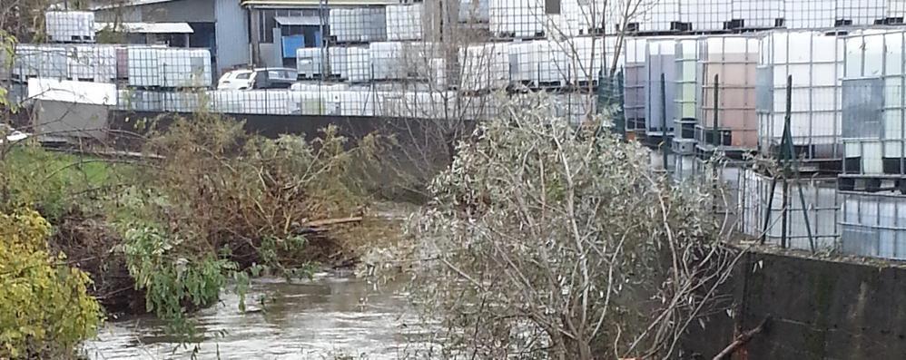 Luisago, finisce dentro il fiume  Salvato dai carabinieri
