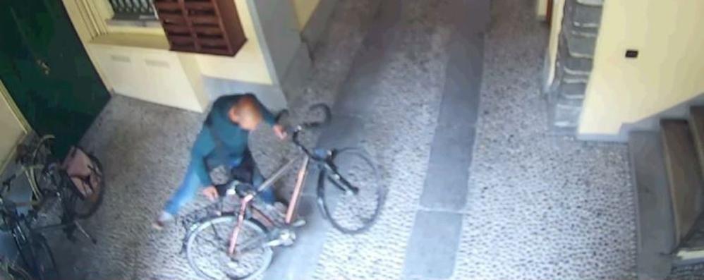Bici rubata in 10 secondi Ecco il video del furto