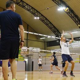 Pool Libertas, è Brescia la prima avversaria in A2