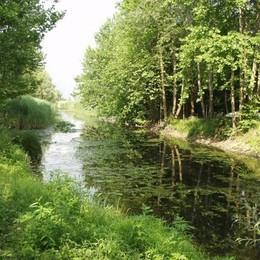 Passeggiate in Brianza tra laghi, fiumi e poeti