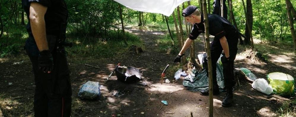 Tentato omicidio nel Parco del Lura  L'aggressore arrestato dai carabinieri