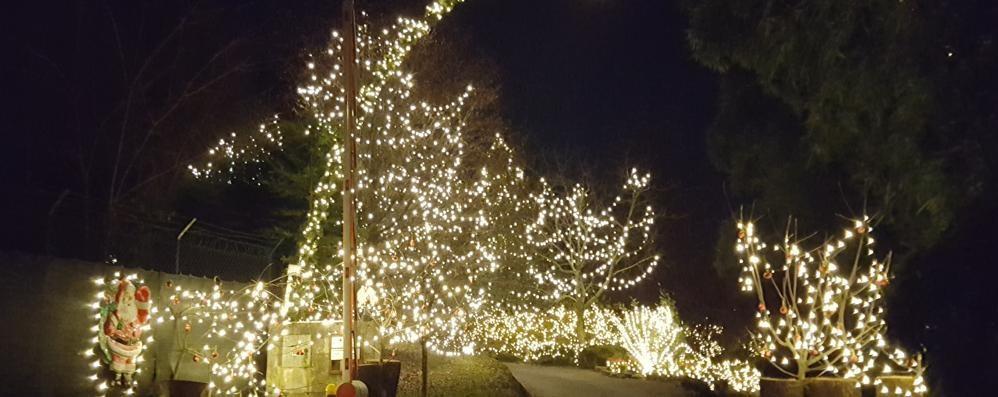 Locate, dieci chilometri  di luci natalizie