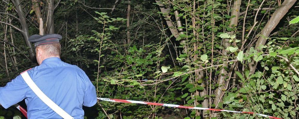 Droga nei boschi, la guerra di Olgiate   «Più agenti per fermare lo spaccio»