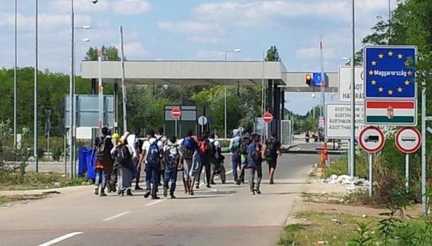 Migranti: Zanetti, male ritorno confini