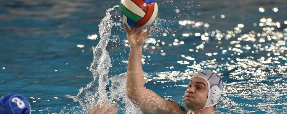 Como Nuoto, vittoria scontata  Pallanuoto Como: impresa sfiorata