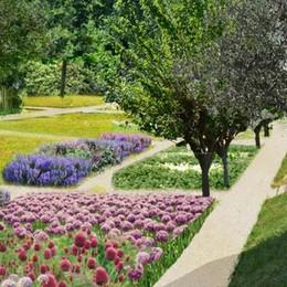 Villa Olmo, tra un anno parco e orto botanico. Guarda come sarà