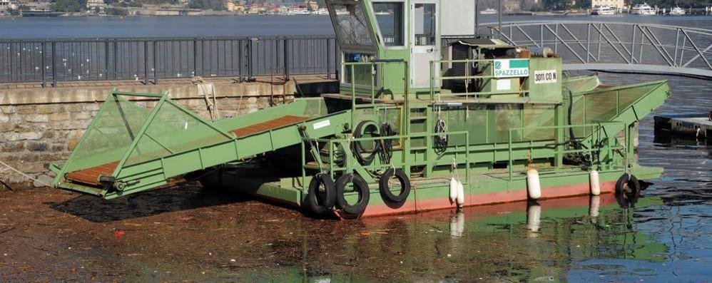 Battelli spazzini fermi  La burocrazia litiga  e il lago resta sporco