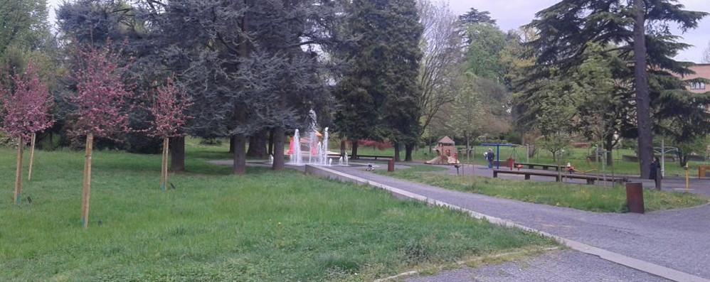 Sorpresa verde a Mariano  I parchi superano l'esame