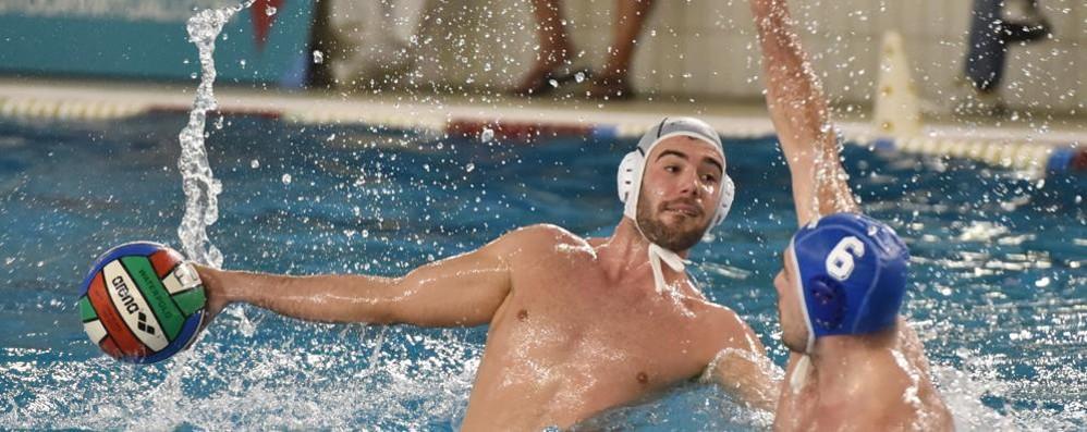Como Nuoto, ancora pari con il Geas  La Pallanuoto Como travolge Modena