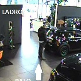 Rubavano auto di lusso  Quattro marocchini in carcere