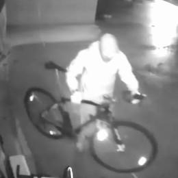Scoperta la banda delle bici  Un furto anche a Como
