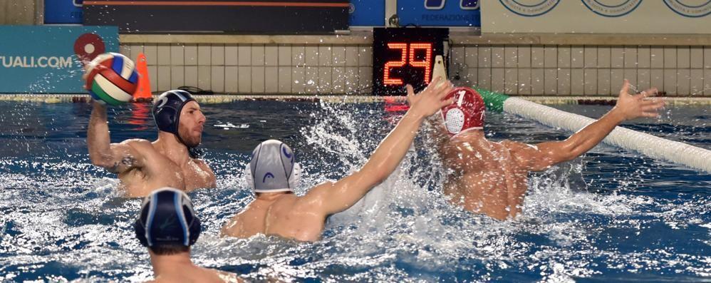 La Como Nuoto a Brescia