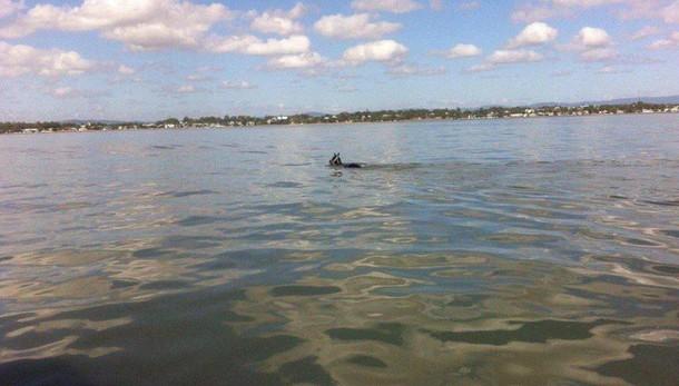 Australia:in barca in fuga verso Isis