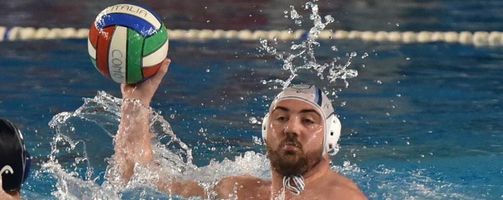 La Como Nuoto festeggia  un insperato terzo posto