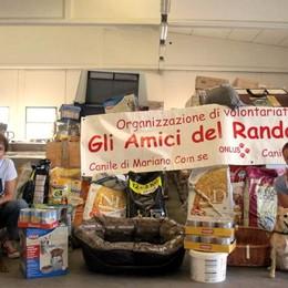 Mariano, a giugno il Natale del canile  Quattro tonnellate di regali