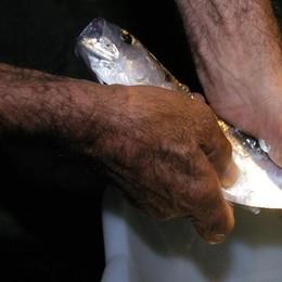 Pescatore cade nel lago  Salvato dagli amici