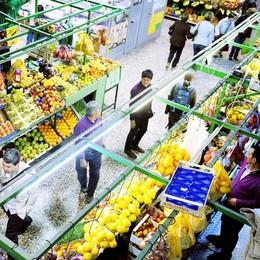 Quei negozi del mercato coperto   che non pagano le tasse: 31 diffide