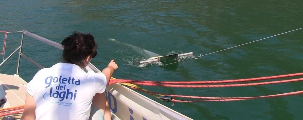 Migliora la salute del nostro lago  Ok i controlli di Legambiente